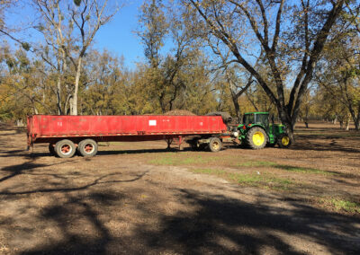 Large red trailer in pecan orchard